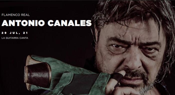 Flamenco Real 2020/21