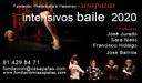 Intensivos de Flamenco - Fundación Casa Patas