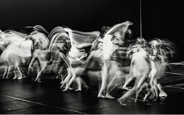 El Consello da Cultura Galega aborda la situación de la danza en Galicia