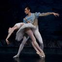 """<p style=""""text-align: center; """"><span style=""""font-weight: bold; """">El lago de los cisnes'</span><br /> Ballet Imperial Ruso<br /> Coreografía: Gediminas Taranda<br /> Teatro Gran Vía de Madrid<br /> Nariman Bekzhanov / Maria Sokolnikova<br /> 2010</p>"""