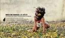 MES DE DANZA, 20 AÑOS. Una historia de la danza contemporánea en Andalucía